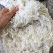 WOOL_100 - Merino Wool Stuffing per 100gram